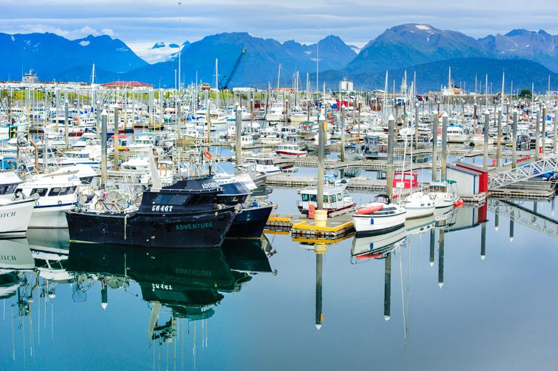 homer alaska boat harbor